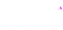 White Logo